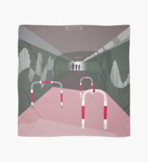 0104 Bicycle slow through tunnel Scarf
