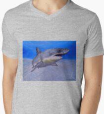 Formidable Beauty Men's V-Neck T-Shirt
