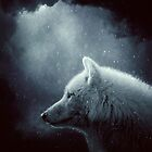Wolf by baxiaart