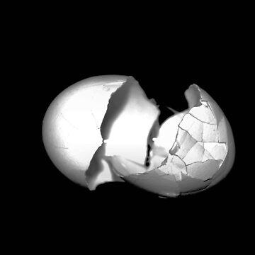 Broken Egg by astone