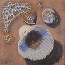 Seashells I by carolelliott7
