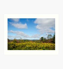 Fall Countryside Landscape Art Print