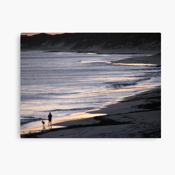 Sombre Stroll Canvas Print