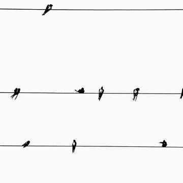 Birds by Kitsmumma