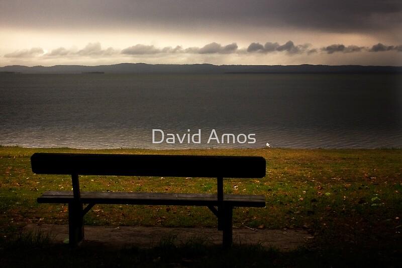 No body here! by David Amos
