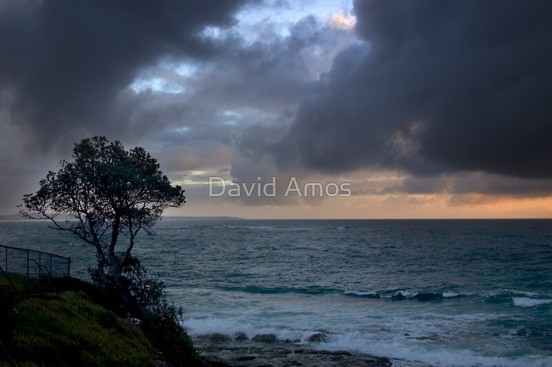 The Entrance II by David Amos