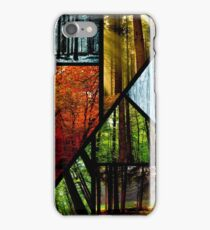 Forest seasons iPhone Case/Skin