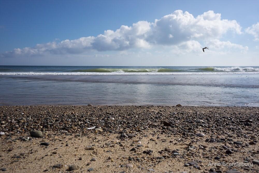 Nauset beach by Anne Scantlebury