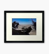 Boneyard Beach: Capers Island, South Carolina Framed Print