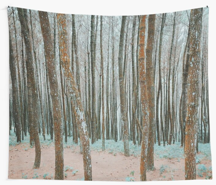 Nature Walk 007 - Tranquil Forest B by aggnarut