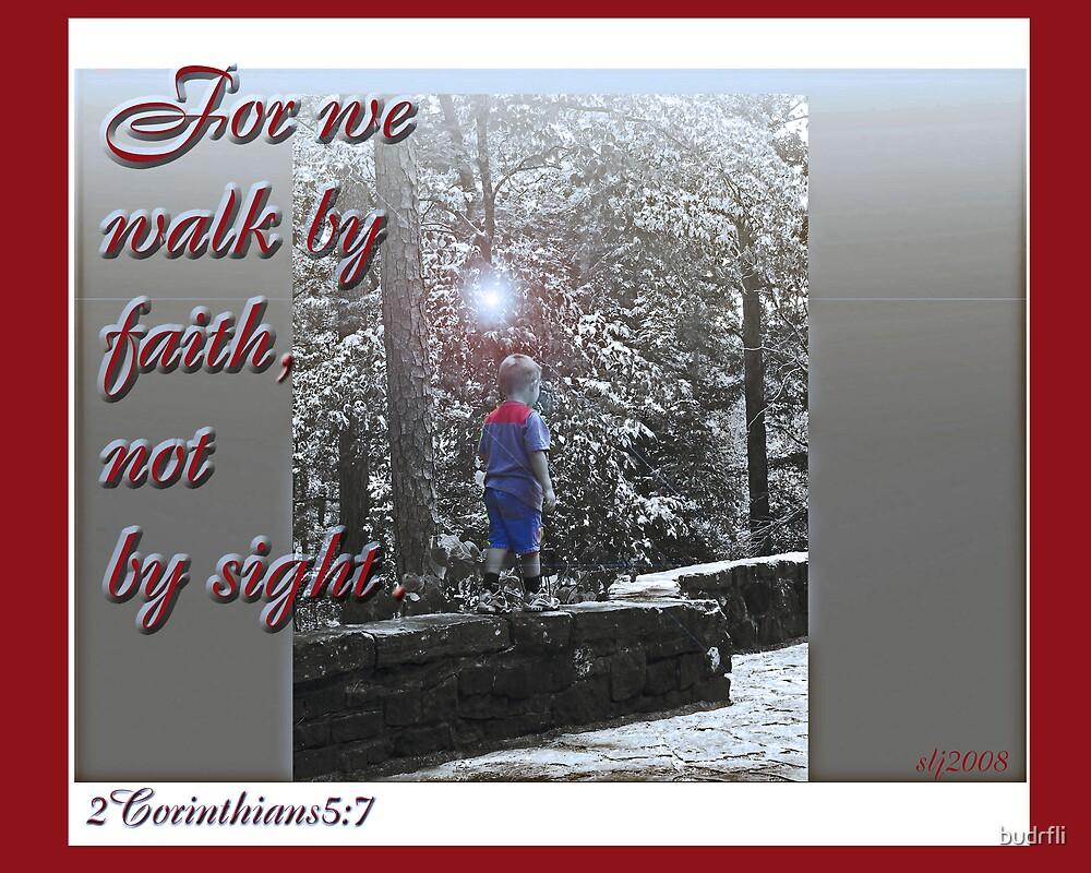 faith walk by budrfli
