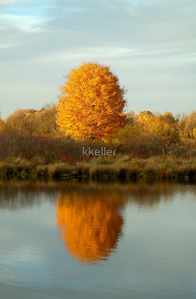 Fall Reflection by kkeller