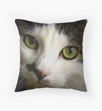 Scooby The Cat Throw Pillow