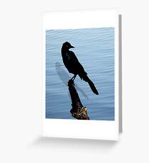 Black Bird at Lake Greeting Card
