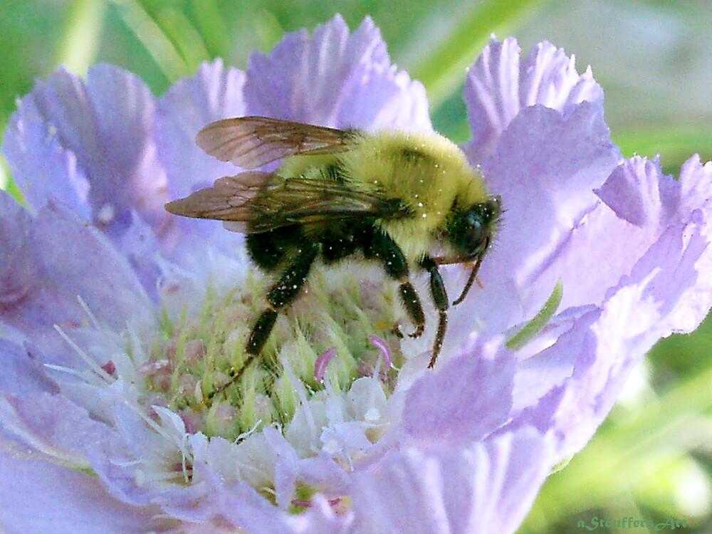Busy Bee. by aStouffersArt