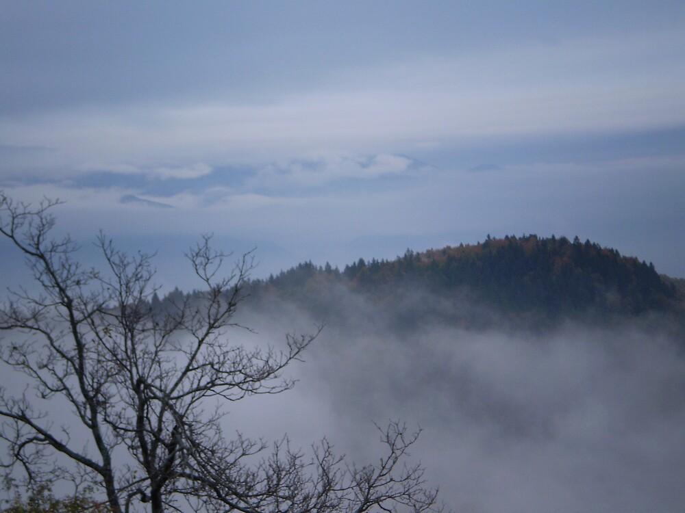 Misty heights by oscars