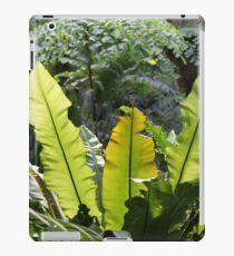 Riesen-Nest-Farn - Tropische Pflanze - Dschungel - Foto iPad-Hülle & Klebefolie