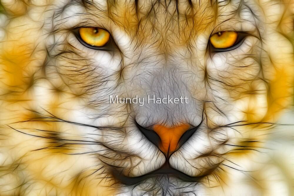 Goldeneye by Mundy Hackett