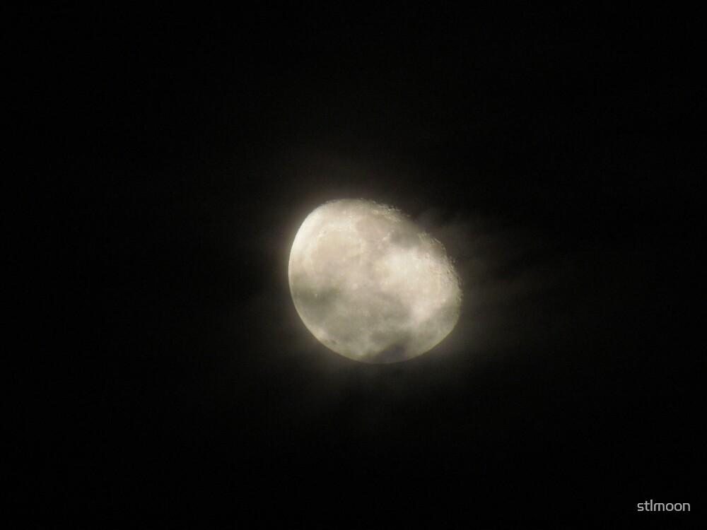 Moon through the mist by stlmoon