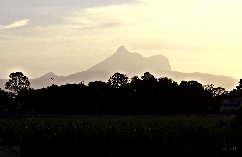 Mt Warning by Carriart