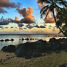 Anini Beach by DJ Florek