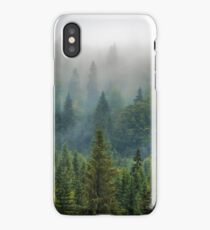 Misty Forest Beauty iPhone Case