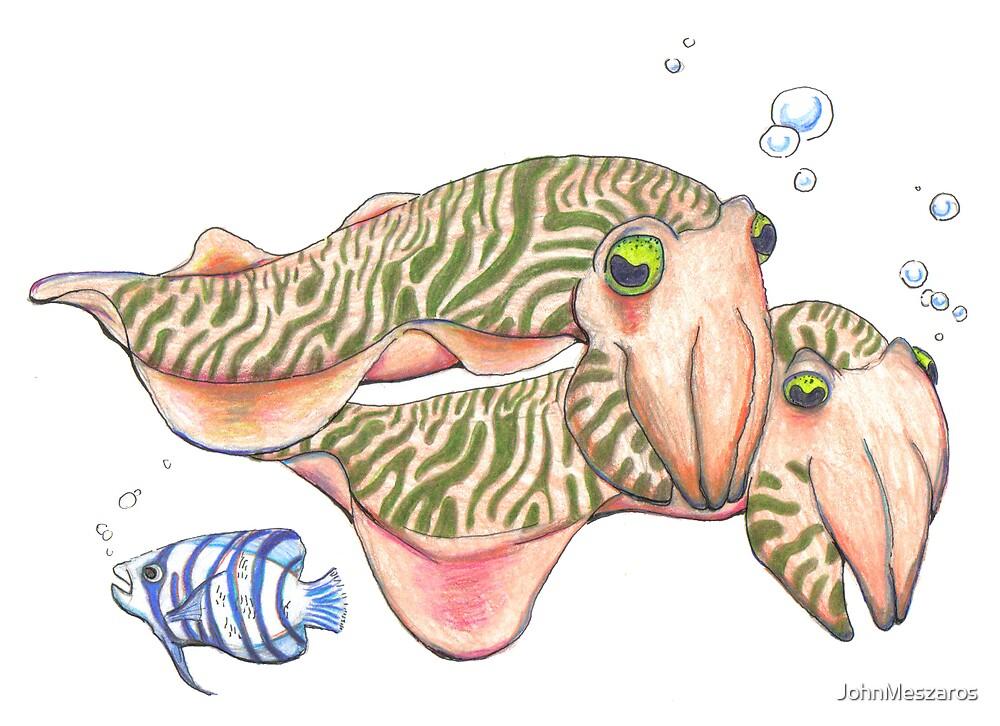 Cuttlefish by JohnMeszaros