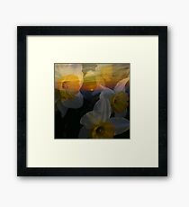 Spring Mountain Sunrise with Daffodils Framed Print