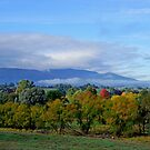 Autumn Scene by Harry Oldmeadow