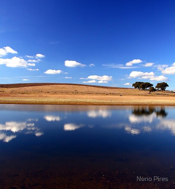 Blue Reflections by Nuno Pires