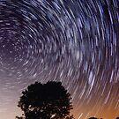 Star Trails by Christa Binder