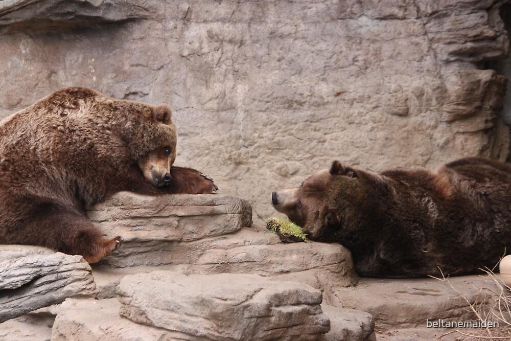 Bear Love by beltanemaiden