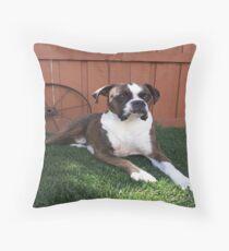 Scenic Boxer Dog Throw Pillow