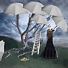 An Umbrella for the Rain by Alison Pearce