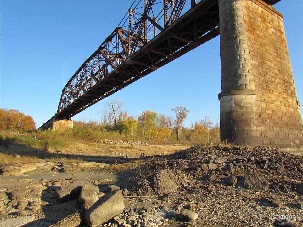 River ratting under the bridge by stlmoon