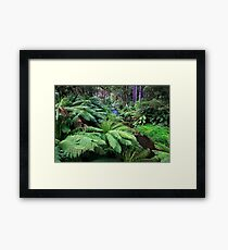 1643 Aire River - up stream Framed Print
