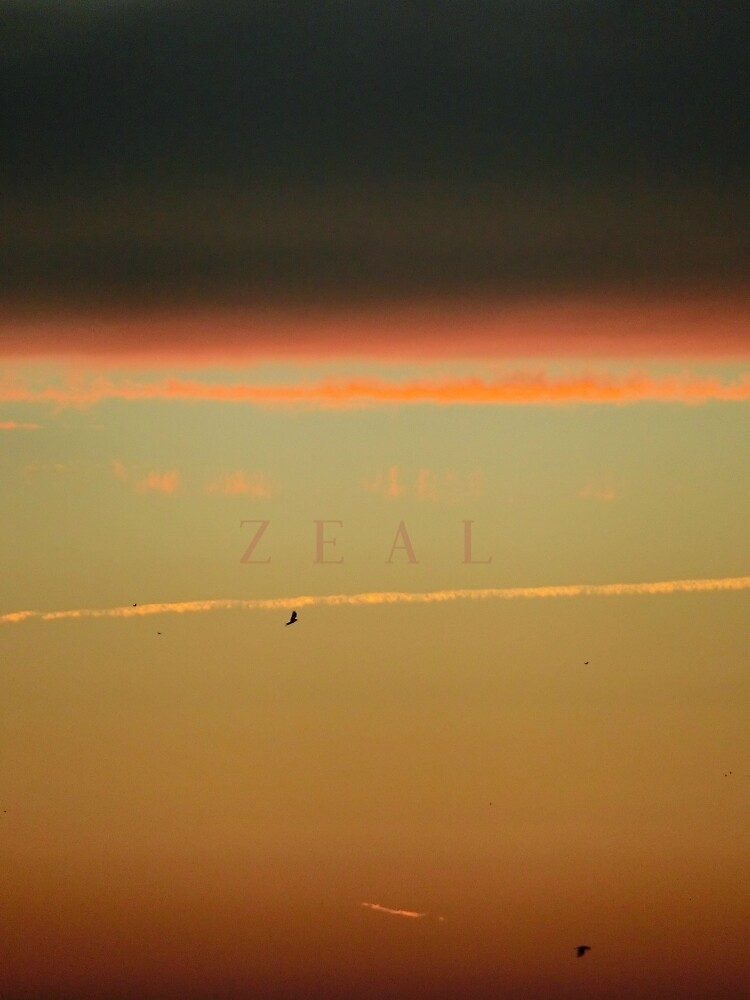 Zeal by C. Photos
