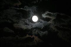 Night Moon... by EvaMarie Cannon