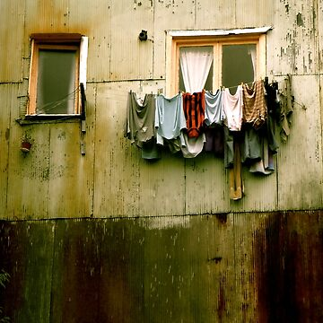 Out to Dry by bareri