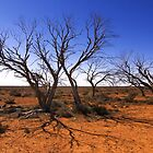 1601 Dead in the outback by Hans Kawitzki