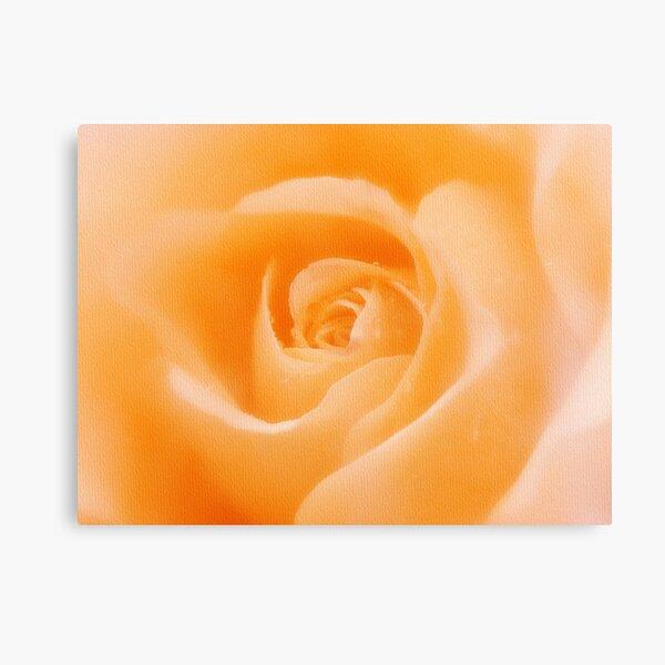 Aroma Of Love Canvas Print