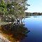 NSW NORTH COAST & HINTERLAND