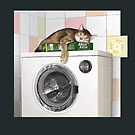 Cat and Washing Machine by Martine Carlsen