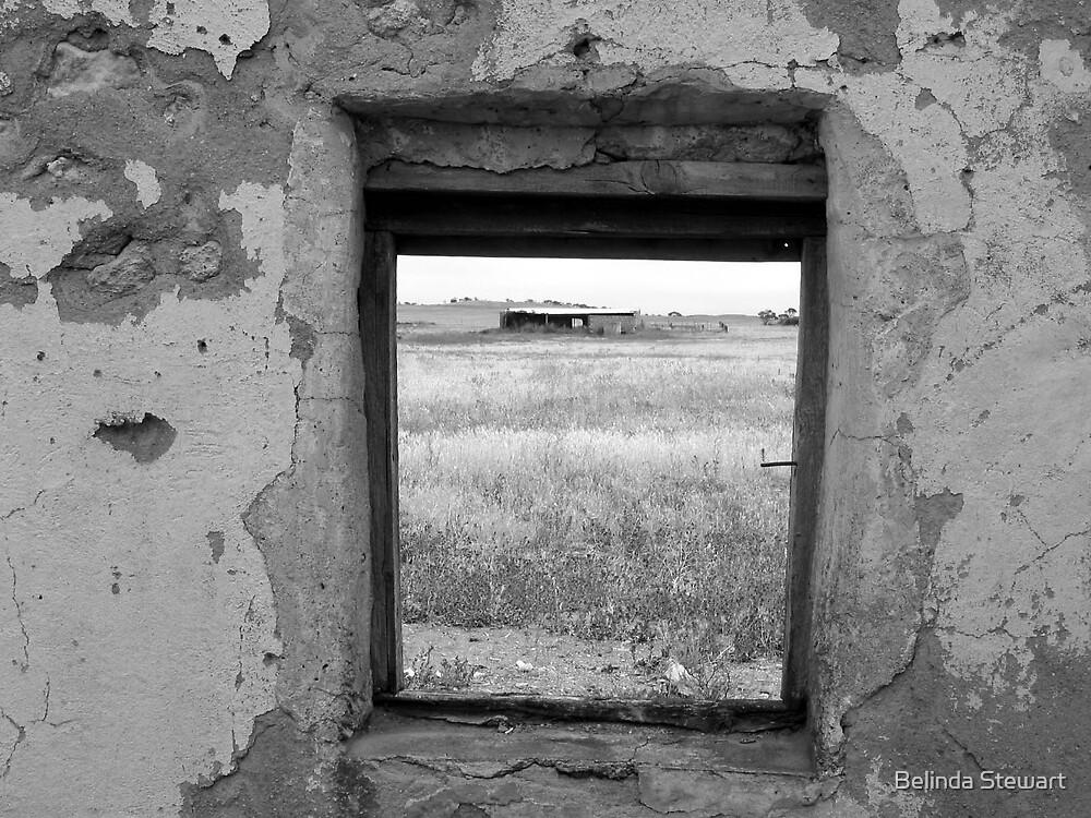 Robertstown in Ruins 3 by Belinda Stewart