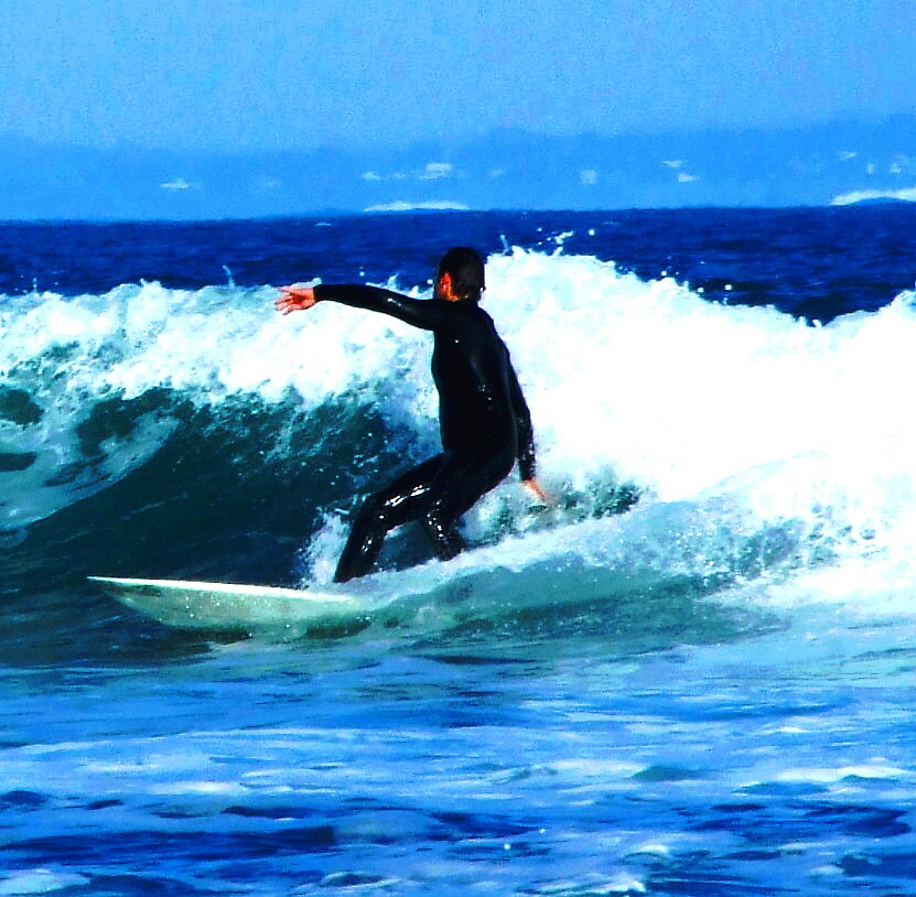 surfing by molly