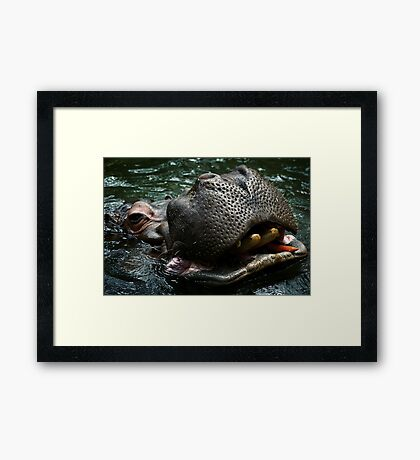 Hungry Hippo Framed Print