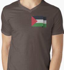 Palestine Men's V-Neck T-Shirt