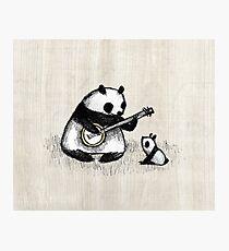Banjo Panda Photographic Print