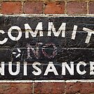 Commit Nuisance by Norman Repacholi