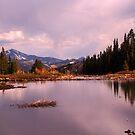 Beaver Pond by Chase Ankeny
